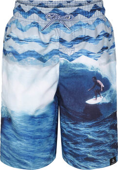 FIREFLY PHTP2 Malcom Swim Shorts