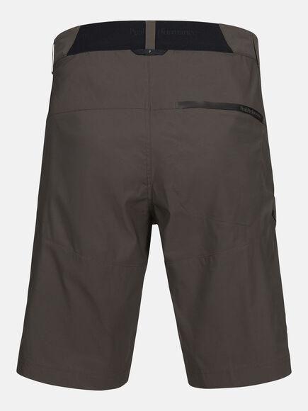 Iconiq long shorts