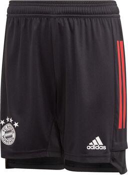 adidas FC Bayern Trænings-shorts.