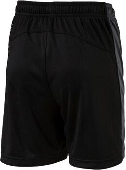 Puma Evo TRG Shorts Sort