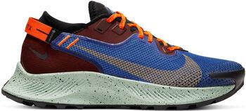 Nike Pegasus Trail 2 Gore-Tex Damer Blå