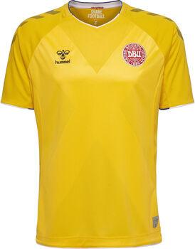 Hummel DBU Goalkeeper Jersey 18/19 Mænd
